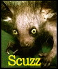 Scuzzbuster
